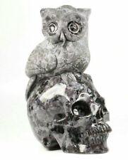 "Huge 5.1"" Gabbro Carved Crystal Skull, Realistic, Crystal Healing"