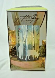Apothecary & Co. - Glass LED Reindeer Candle w/Daily Timer (No Remote) Holiday