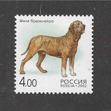 Dog Art Full Body Study Portrait Postage Stamp Spanish Mastiff Russia 2002 Mnh