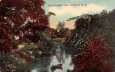 Himrod New York Scenic Birdseye View Waterfront Antique Postcard K86381
