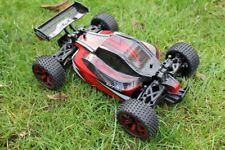 Amewi 22222  Buggy Storm D5