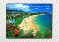 SOUVENIR FROM HAWAII PACIFIC PARADISE ISLAND #2 FRIDGE MAGNET -jsd3Z