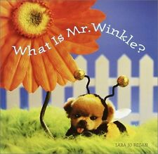What Is Mr. Winkle? (Step Back in Time with Mr. Wi
