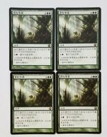 4 Chinese Asceticism (Playset) Scars of Mirrodin Magic the Gathering MTG NM-Mint
