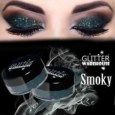Smoky Gray Holographic GlitterWarehouse Loose Cosmetic Glitter Powder Eyeshadow