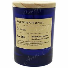 Scentsational Natural Soy Wax 11oz Single Wick Medium Blue Candle - STORM Scent
