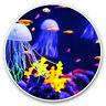 2 x Vinyl Stickers 10cm - Funky Jellyfish Marine Sea Scuba Diving Cool Gift #852