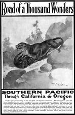 MOUNTAIN LION California & Oregon ROAD OF 1000 WONDERS Southern Pacific Railway