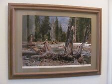 "Paul Calle   "" In Search Of Beaver "" Beautifully Framed LOWEST EBAY   #JC210DSS"