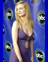 Heather Graham The Hangover Sexy Actress 8x10 Glossy Color Photo