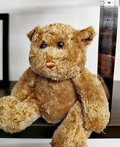 Authentic Plush Teddy Bear