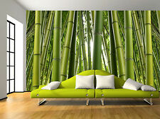 Nature Green Bamboo Trees Plant Wall Mural Photo Wallpaper GIANT WALL DECOR