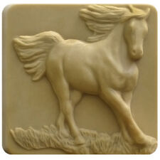 Running Racing Equestrian Horse Animal Milky Way Soap Mold Melt Pour Cold Procss