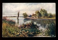 Norfolk Broads HORNING FERRY Tuck Oilette #6487 PPC used 1905