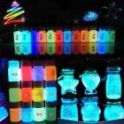 20g Glow in the Dark Acrylic Luminous Paint Bright Pigment Party DIY
