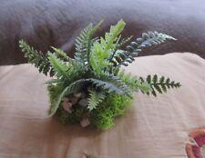 Miniature doll/dollhouse/Train accessory fern plant/wood base/pebbles/moss