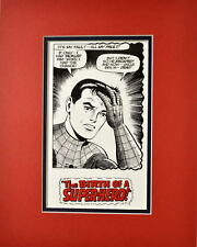 SPIDER-MAN - BIRTH Of A HERO PRINT PROFESSIONALLY MATTED
