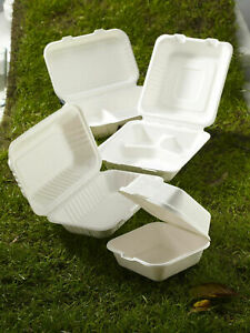 White Biodegradable Bagasse Sugarcane Food Containers Paper Hot Cold Disposable