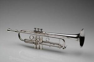fasch FST-2000S Bb Trompete