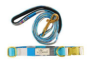 Blue Floral Stylish Pet Dog Cat Collar And Leash Set Polyester Gold Hardware