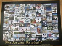 Texas Windmill Weathervane Poster 18x24 photo collage montage