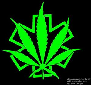 Medical Marijuana Decal Medic Star of Life Pot Leaf dispensary vinyl sticker
