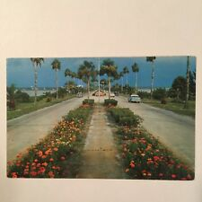 FLOWERLINED CAUSEWAY CLEARWATER FLORIDA 1950S CHEVY CAR POSTCARD