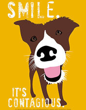 Smile It's Contagious by Ginger Oliphant Art Print Fun Animal Dog Poster 11x14