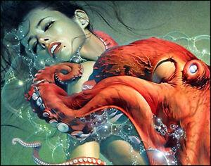 """HAJIME SORAYAMA - OCTOPUS. EROTIC ART REPRINT 11""""x14"""""""
