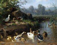Canvas Prints Ducks on the River by Carl Jutz Framed & Ready to Hang Best Qualiy