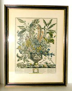 Colonial Williamsburg Furber January Floral Engraving in Original CW Frame