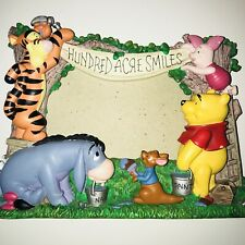 """Winnie The Pooh & Friends 3D Picture Frame""""Hundred Acre Smile"""""""