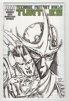 Teenage Mutant Ninja Turtles # 22 RE (2013 IDW) Phantom Variant NM