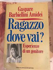 BARBIELLINI AMIDEI - RAGAZZO DOVE VAI? - MONDADORI - 1990 1^ED