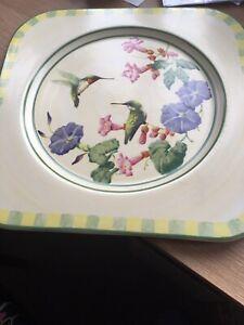 Platter Hummingbird