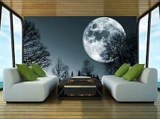 Dark Night  Wall Mural Photo Wallpaper GIANT DECOR Paper Poster Free Paste