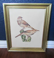 Cactus Wren Framed Audubon Art Print Browns Greens Gold Frame