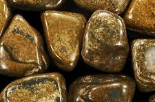 "Bronzite Tumbled 1 1/2"" 2 Oz Rocks and Minerals Root Chakra Natural Specimens"