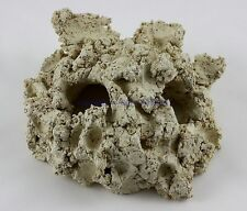 riffhöhle 2 Hole Reef Ceramic Arka 15cm Decor Riff Cave for Saltwater Aquarium