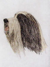Geoffrey Lasko - Bearded Collie Dog - Hand Colored Etching - S&N - Free Ship
