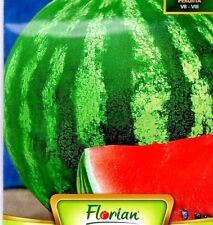 WATERMELON CRIMSON SWEET - CITRULLUS LANATUS - 100 HIGH QUALITY FRUIT SEEDS /261
