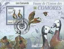 Timbre Oiseaux Canards Comores BF208 o année 2009 lot 21390 - cote : 21 €