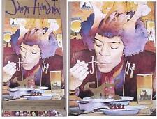 JIMI HENDRIX HALLUCENIGENICALLY RARE VOODOO SOUP CD / LP COVER ART POSTER