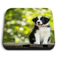 Square MDF Magnets - Black & White Border Collie Puppy  #16023