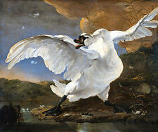 The Threatened Swan by Jan Asselyn 100% Canvas Giclee Print ready to frame