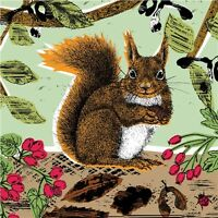 RSPB Card - Red Squirrel