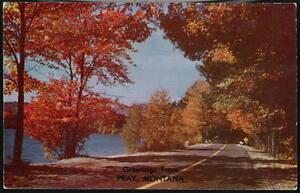 PRAY MT Vintage Greeting Postcard Forest Stream Highway