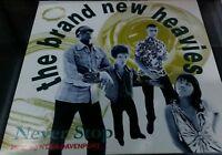 "Brand New Heavies, Never Stop LP (VG) 12"""