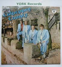 À Culpeper County-à Culpeper County-Excellent vendeur LP record Pixie Pix 0004