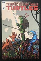 Teenage Mutant Ninja Turtles #104 IDW Variant Comic Retailer Incentive Ronin NM+